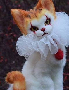 How cute is this 😍 Cute Wallpaper Backgrounds, Cute Wallpapers, Pretty Cats, Cute Cats, Funny Instagram Memes, Clown Horror, Cute Fantasy Creatures, Creepy Cat, Pennywise The Clown