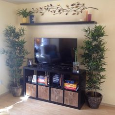Ikea entertainment center - expedit shelving unit, fake bamboo plants (also Ikea), and Lack floating shelf above the TV.