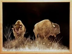 """""""Bison Pair"""" 20""""x16"""" - Scratch Board Drawing"""