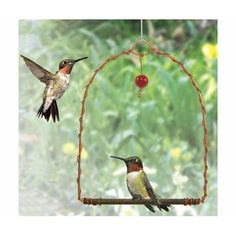 Copper HUMMINGBIRD SWING Hummingbirds are territorial and will use this swing as a perch to watch over their food source. Simply place this swing near hummer feeders and enjoy watching them sit and swing. Red glass bead dangler attracts birds.