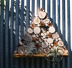 Triangle Wall Shelf, Tree Slice art, Air Plant, Wall Planter, made with recycled wood, wall shelf, Altar, Shrine