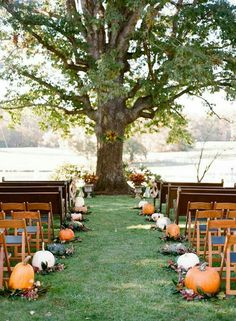 Pumpkins line the aisle fall wedding