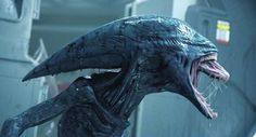 The Deacon — also known as an Proto-Xenomorph — is a Xenomorph-like species created by the Engineers (Space Jockeys) to be used as a weapon, which turns around and backfires horribly. It bears many resemblances to the Xenomorph; however, it possesses more human-like teeth and has an erect bipedal posture. Its head shape is also unlike that of Xenomorphs, and it seems to emerge from its host using its pointed skull as opposed to simply biting or punching through the ribcage.