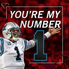 You're my number 1 too! Nc Panthers, Panthers Football, Carolina Panthers, Panther Nation, Toy Dog Breeds, Cam Newton, Therapy Dogs, Nfl Jerseys