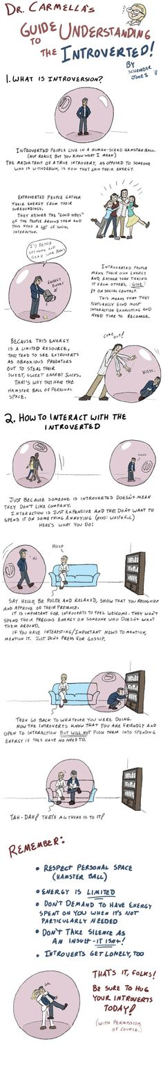 If You Didn't Get It Why You Couldn't Get Along With Introverts Before You Read This, You'll Understand After