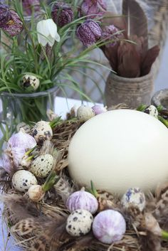 Ostrich & quail eggs.                       blogg - by mildred