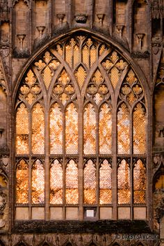 Windows surrounded by gothic tracery glowing in the evening sun at Ely Cathedral. Gothic Windows, Church Windows, Arched Windows, Architecture Antique, Beautiful Architecture, Architecture Details, Cathedral Architecture, Ely Cathedral, Medieval