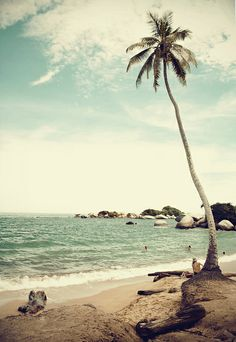 Praia e Mar by Daniel Alho