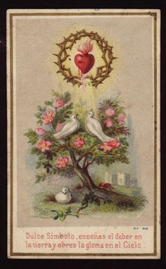 Dwelling in the streams of Living Water! doves cross sacred heart