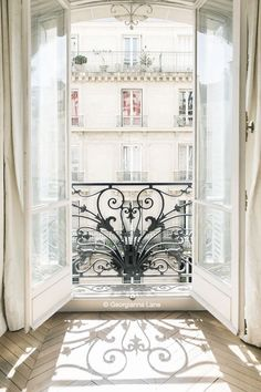 Bedroom windows: parisien opening windows & most of downstairs: factory style/pane windows