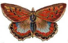 *The Graphics Fairy LLC*: Antique Graphics - 2 Colorful Butterflies