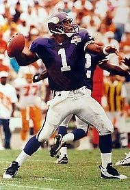 The Minnesota Vikings had obtained QB Warren Moon (pictured at right) from  the Houston Oilers after the 1993 season 38292a3d9