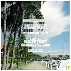 Today's Photo From Kota Kinabalu #Today_Photo with Jin Air #jinair #진에어 #코타키나발루 #KotaKinabalu #kotakinabalu #재미있게진에어 #재미있게지내요