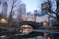 Central Park, New York. Central Park bridge at dawn in New York , Central Park, Monuments, The Places Youll Go, Places To See, Manhattan, A New York Minute, Voyage New York, Empire State Of Mind, I Love Nyc