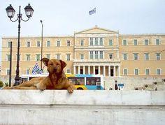 Athens Walker: Athens Museums