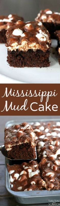Chocolate cake with melted marshmallows and warm chocolate frosting make up this AMAZING Mississippi Mud Cake!  | tastesbetterfromscratch.com  #easy #recipe #fromscratch #best #marshmallow