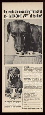 1952 Cute Dachshund 2 Photo Milk Bone Dog Biscuits Vintage Print Ad   eBay