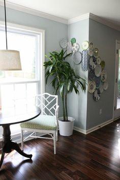Superb deko pflanze und teller an der wand als dekoration Zeit f r Kunst u