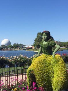 Snow White topiary, Epcot