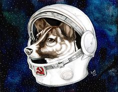 Laika Dog, Belka And Strelka, Album Cover Design, John James Audubon, Space And Astronomy, Losing A Dog, Aboriginal Art, Space Exploration, Illustrations And Posters