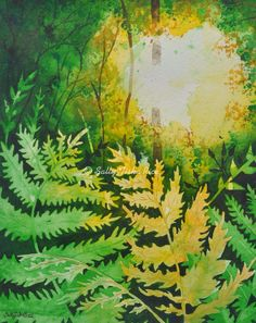 "Light in the Ferns  Watercolor 140 lb. cold press sheet Matted and framed in a 11""x14"" Teak Hard Wood Frame $235.00  Sally Tiska Rice in the Brothership Building Window  141 North Street, Pittsfield, MA  Website: www.sallytiskarice.comFollow on twitter https://mobile.twitter.com/SallyTiskaRice/followers"