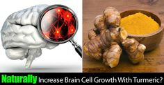Naturally Increase Brain Cell Growth With Turmeric Indian Food Recipes, Indian Foods, Healthy Cholesterol Levels, Cell Growth, Cooking With Olive Oil, News Health, Self Healing, Brain Health, Daily Meals