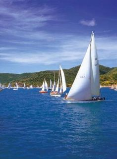 See Airlie Beach from the sea in a weekly sailing race organised by the Whitsunday Sailing Club. It costs nothing.