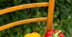 Recette de la peperonata, la poivronade italienne. Un régal végétal et parfumé à base de poivrons.