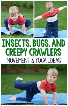 What fun ways to incorporate movement into an insect theme! I love that these kids yoga poses are all insect, bugs, or creepy crawlers themed. Great for gross motor, preschool activities, kindergarten activities and beyond! for kids Preschool Yoga, Preschool Lessons, Kindergarten Activities, Toddler Activities, Preschool Bug Theme, Spring Activities, Preschool Games, Preschool Crafts, Kids Yoga Poses
