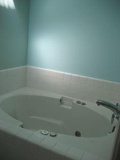 Deep Jacuzzi tub in master bathroom. Vaulted ceiling & Skylight