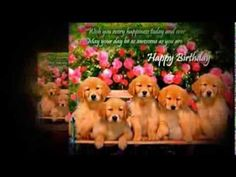#Birthday Greetings Featuring Cute #Animals share cute things at www.sharecute.com