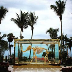 A Damien Hirst at the Faena Hotel