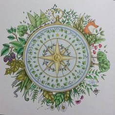 #enchantedforest #coloring #johannabasford #adultcoloring #antistress #prismacolor