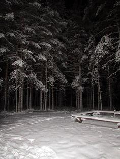 Campfire place at winternight. Soljanen, Seitseminen National Park.  Finnish nature through my eyes - Sari Lapikisto