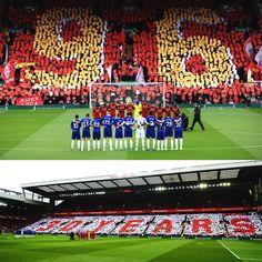 Login to Liverpool Goals Liverpool Goals, Steven Gerrard, Best Fan, Fans, Community, Football, City, World, Soccer