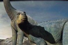 Dinosaur images dinosaur wallpaper and background photos Disney Dinosaur, Dinosaur Movie, Dinosaur Photo, Dinosaur Images, Disney Animation, Disney Pixar, Walt Disney, Animation Movies, Dinosaur Wallpaper