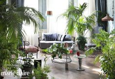 www.marieclaire.it/Casa/tendenza-arredo-giardino-interno