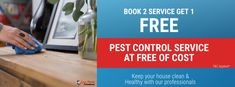 Now, book pest control service at zero of the cost. Just Book pest control with 2 different services and get pest control service at just free. contact at 0731529572 Domestic Cleaning, Best Bond, How To Remove, How To Apply, Insect Pest, The Tenant, House Cleaning Services, Pest Control Services, Insect Repellent