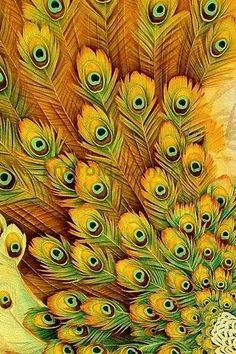 Peacock feathers. Gold