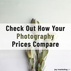 When starting a new photography business, one of the biggest hurdles is deciding how to price your photography. So, we at the Joy of Marketing, an educational resource for over 90,000 professional photographers, surveyed 1,828 professional photographers about pricing photography. The survey respondents are from 15 countries and specialize in portraits and/or wedding photography. So how does your photography pricing compare to our survey respondents? Photography Pricing, Photography Business, Digital Photography, Wedding Photography, Photographer Needed, Professional Photographer, Portrait Photographers, Portraits, Lost Money