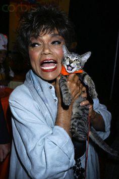 Eartha Kitt (Cat Woman and cat) Photo Vintage, Vintage Cat, Crazy Cat Lady, Crazy Cats, I Love Cats, Cool Cats, Celebrities With Cats, Animal Gato, Eartha Kitt