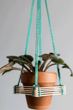 Craft a hanging plant holder. - GoodHousekeeping.com