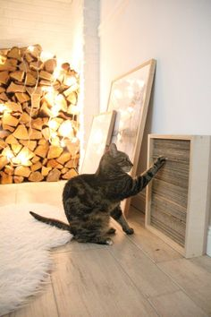Make DIY cat scratching board yourself - DESIGN DOTS cute food diy garten witzig Crazy Cat Lady, Crazy Cats, Bb Chat, Cat Hacks, Cat Shelves, Cat Playground, Playground Ideas, Gatos Cats, Cat Scratcher