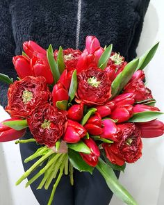 ⚘ Garden Roses 🌷 Tulip 🌷 Bouquet 🌷 #gardenroses #redroses #redgardenroses #red #redcolour #tulip #redtulips #flowershots #flowers #flowerlovers #loveroses #lovetulips #beautiful #uniquecolor #uniquebeauty #lovered #love #passion #obsessed #obsessedwithflowers #bouquet #gift #floristshop #thessaloniki #greece #anthostheartofflowers Red Tulips, Red Roses, Tulip Bouquet, Garden Roses, Thessaloniki, Unique Colors, Fresh Flowers, Flower Art, Red Color