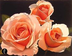 Saper Galleries is the source for Brian Davis botanical and floral paintings Art Floral, Art Hyperréaliste, Watercolor Flowers, Watercolor Paintings, Floral Paintings, Watercolours, Brian Davis, Three Roses, Romantic Roses