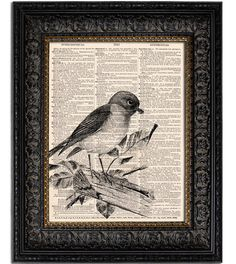 BLUEBIRD bird art print altered book page print on by Vintagraphy, $10.00