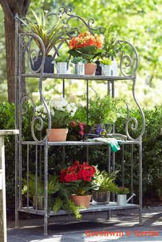 """Matilda' Metal Bakers Rack. This dramatic stand can hold a garden of greenery! Form, function and economy of space is paired with elegant scroll metal and wood shelves that is perfect for any room. 52.5""""H See ot here: www.GershwinandGertie.com Don't forget to """"Share"""" this with your friends! Help us spread the word about Gershwin & Gertie!"""