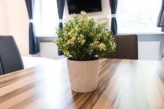 Booking.com: Ferienwohnung checkVIENNA – Enenkelstrasse , Wien, Österreich - 285 Gästebewertungen . Buchen Sie jetzt Ihr Hotel! Vienna Hotel, Holiday Apartments, Marble Floor, Nice Apartments, Modern Interiors