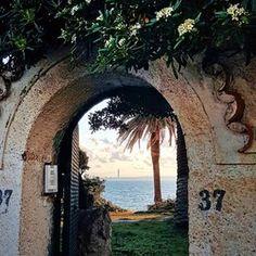 Wonderful view from Algiers beach 🏖. . . Copyright @zinedine_semrouni_ 📍. 🔓hashtag, use #tourismAlgeria ➖➖➖➖➖➖➖➖➖➖➖➖➖➖➖➖➖➖➖ #Algeria #adventure #africa #amazing #dz #tourism #beach #kabyle #photooftheday #photography #Algiers #tourismAlgeria #algerie #الجزائر #السياحة #dz #dzair #instatravel #Algiers #Oran #Constantine #grandmaghreb #capitale #saharadesert #sahara #desert #kabyle #oasis #sahra #afrique #Bejaia #africa #northafrica
