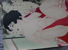 Shunga, Japanese Erotic Art Collection. Early 20th Century?